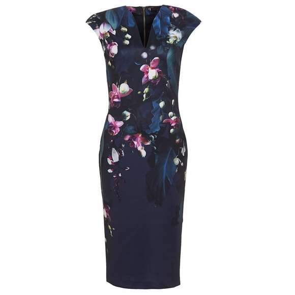 1cc8fefd1f2e5 Ted Baker Floral Antonya Dress